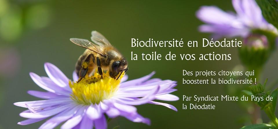 Biodiversité en Déodatie, la toile de vos actions