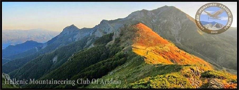 Ελληνικός Ορειβατικός Σύλλογος Αριδαίας