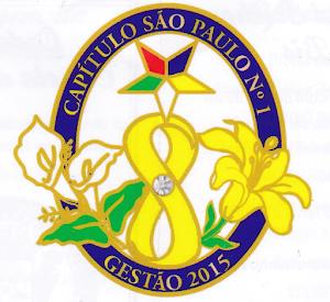 PIN da XVI Gestão 2015