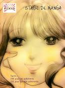 Stage de Manga