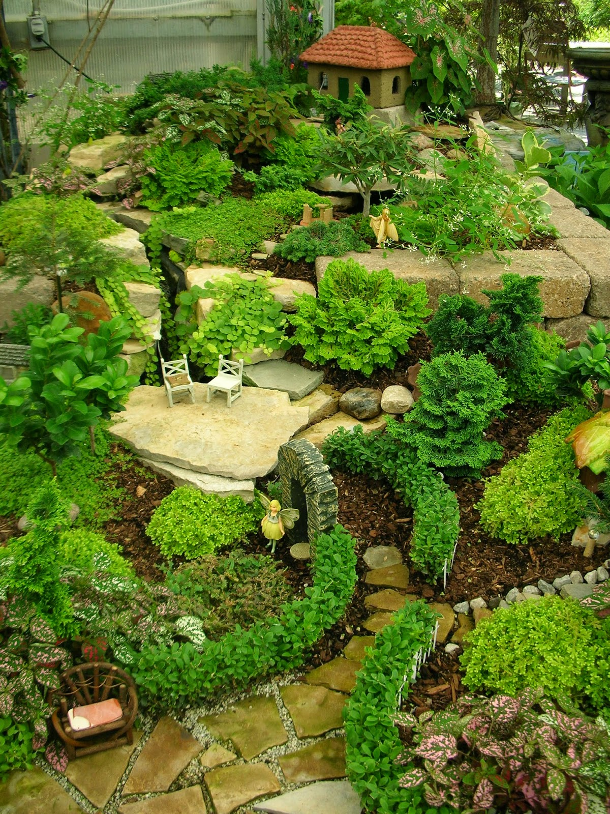 Garden thyme with the creative gardener creative fairy for Creative garden design 805