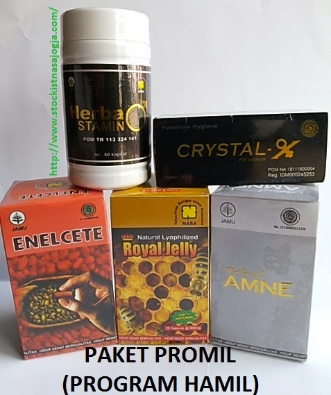 http://www.stockistnasajogja.com/2014/12/paket-program-hamil.html