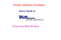 Bluewhale-Solutions-walkin-freshers-chennai