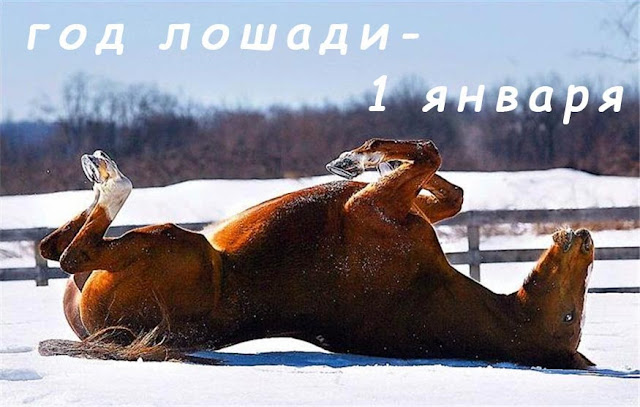 2014 – год Лошади – 1 января