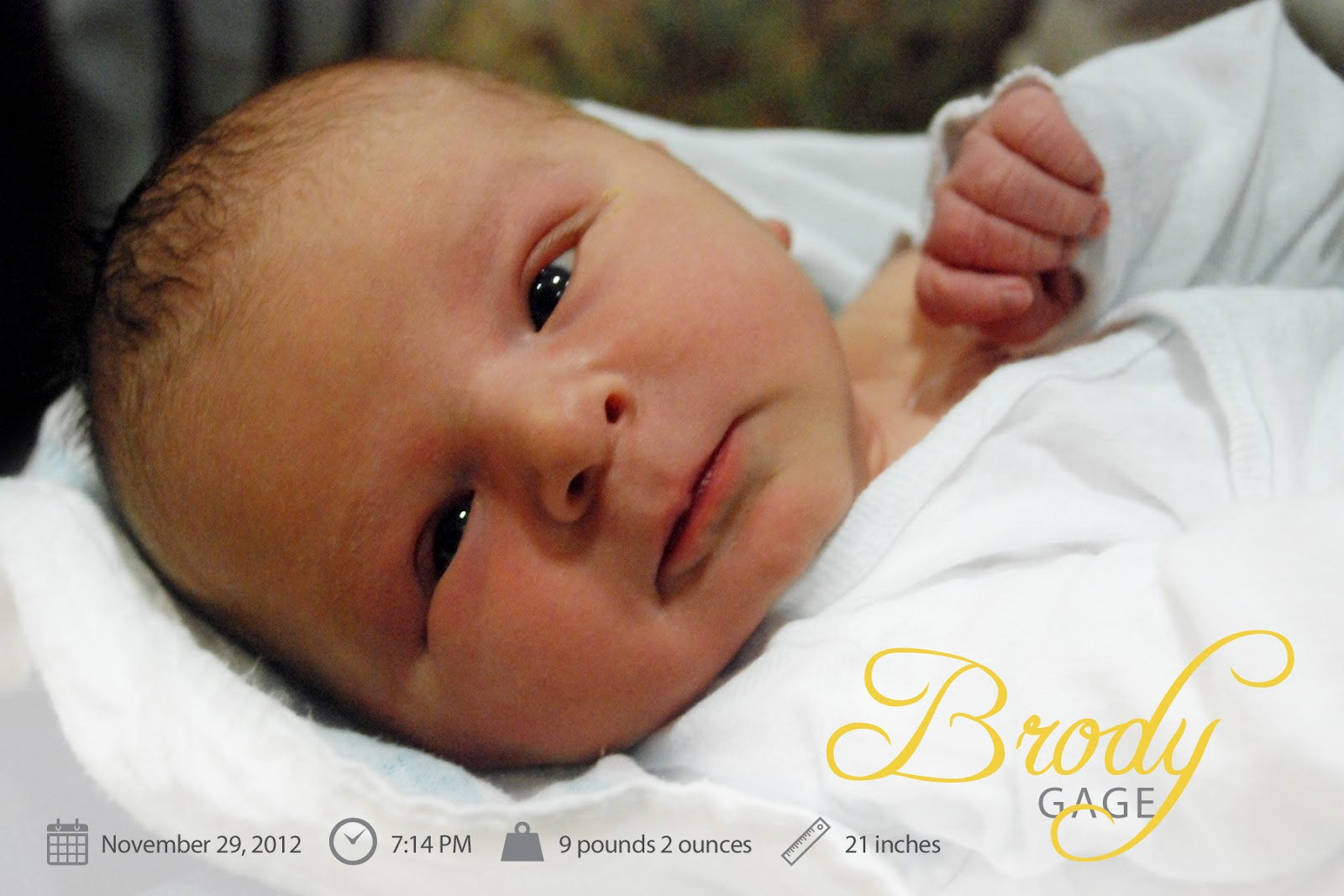 Andrea Arch: Brody\'s birth announcement + Christmas card infographic