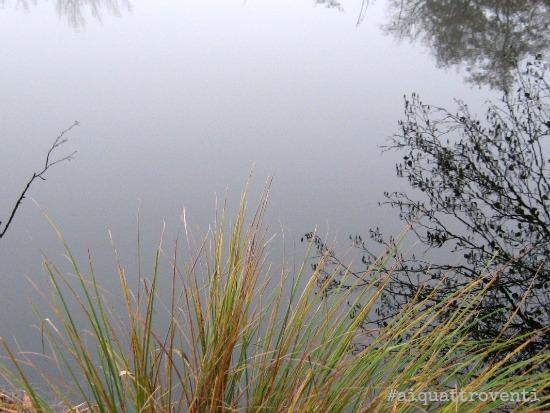 aiquattroventi-autunno-lagoni-riflessi-ciuffo