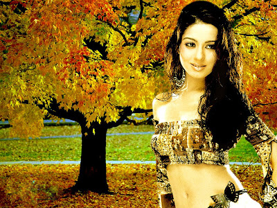 Amrita Rao Wallpapers 13 and Amrita Rao Movies Wallpapers