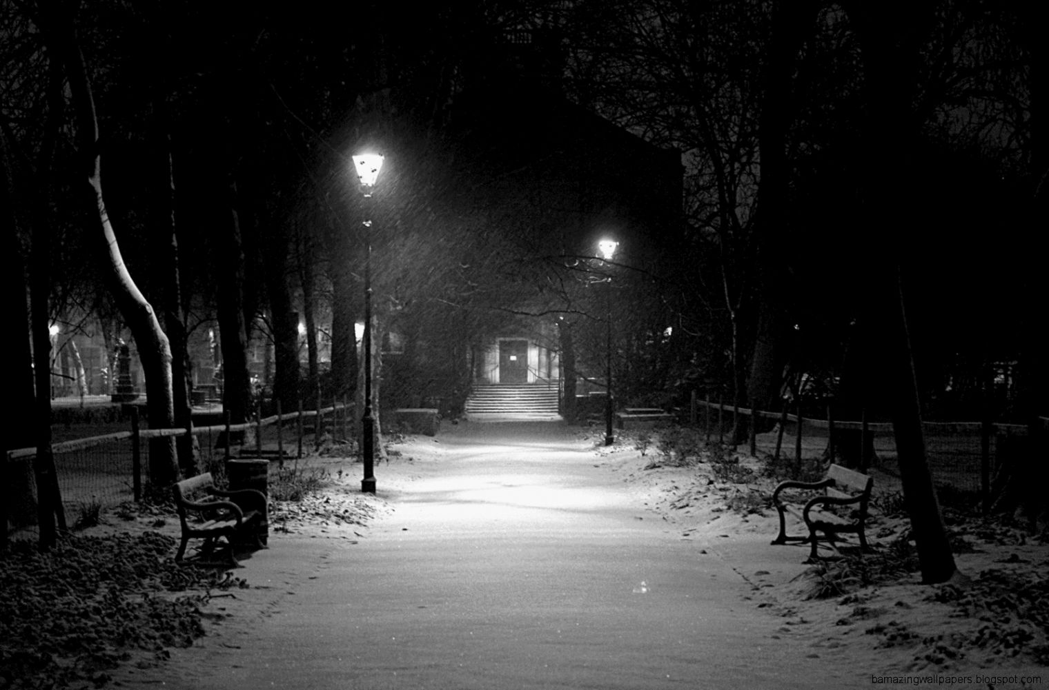Popular Snowing In The Park GIF   Weather Snow   Discover  Share GIFs