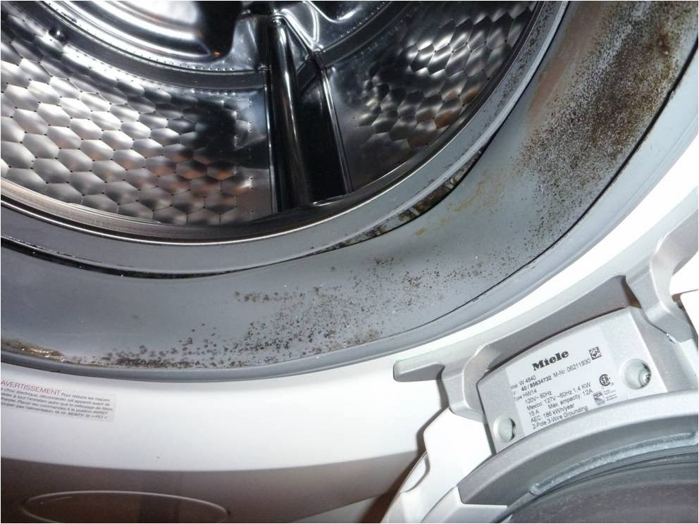 mold in front load washing machine