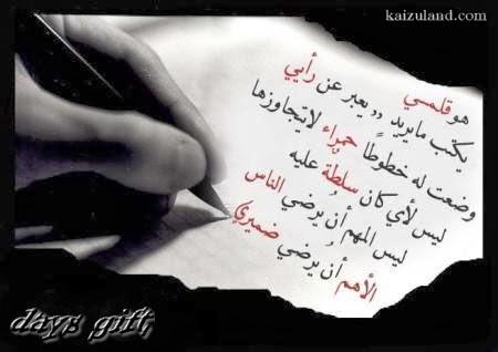 محمد طلعت محمد حسن