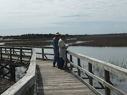 Viewing the salt marsh from the boardwalk