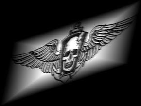 Comandos Anfíbios