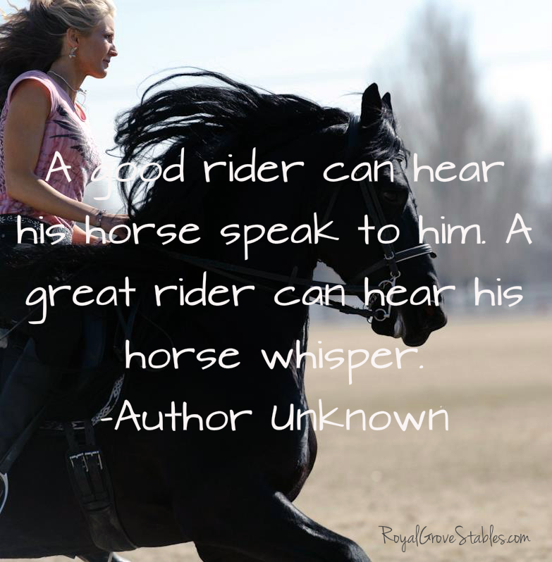 Horse Pictures With Quotes Inspirational horse quotes