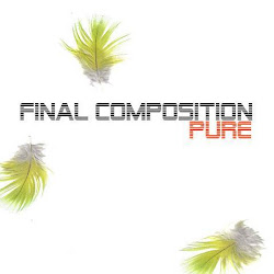 Final Composition - Pure (2011)
