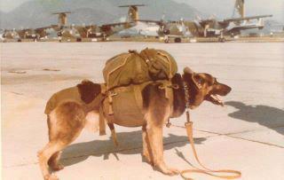 Mortero con su equipo de paracaidista.