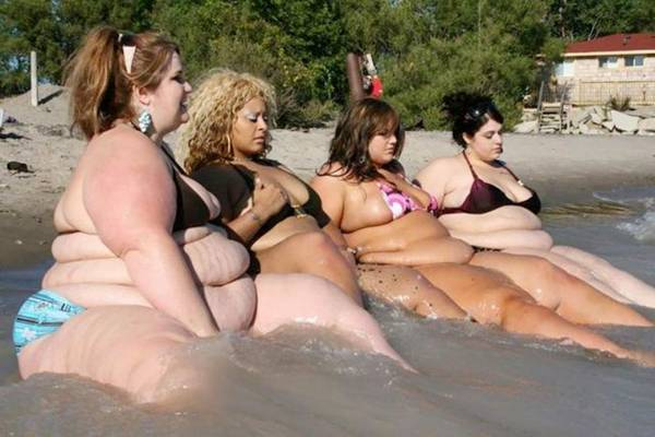 Related Posts Funniest Fat People Worlds Fattest