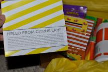 2 Jobs August 2013 Subscription Citrus Lane