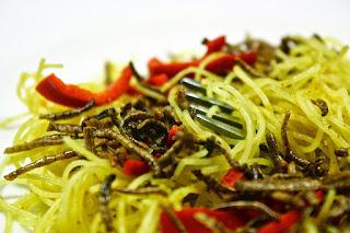Tenebrio Molito Noodles