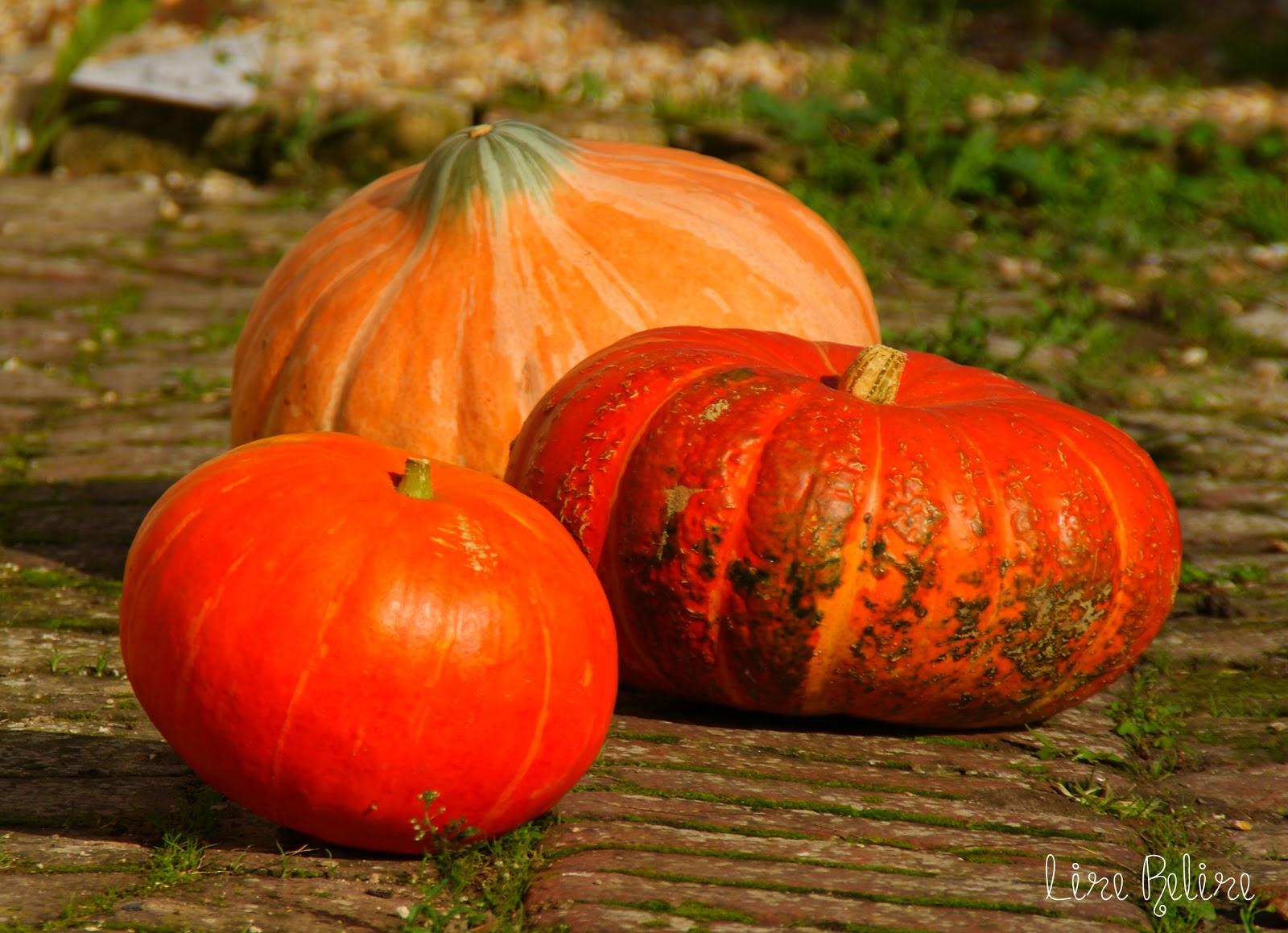 Lire Relire Ne Pas Lire ♨ Une Soupe D Halloween