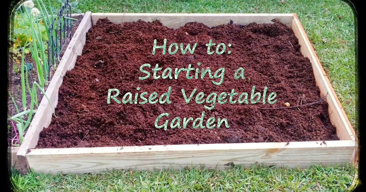 Greneaux gardens how to starting a raised vegetable garden for Starting a vegetable garden