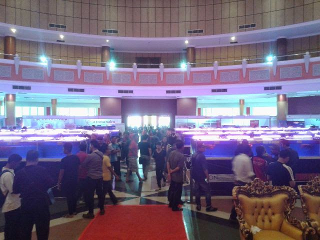 Arowana International Contest and Expo 2015