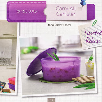 CARRY ALL CANISTER TUPPERWARE