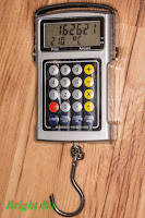 Multifunction Electronic Hanging Scale hour/temperature view