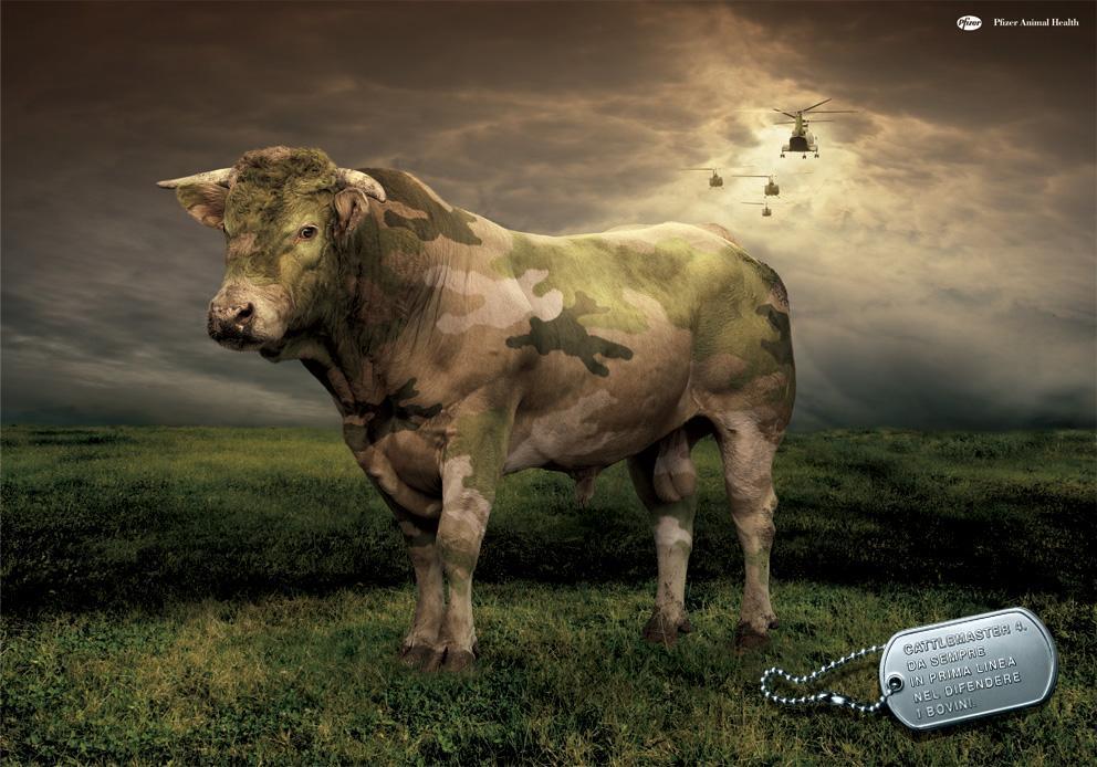 Pfizer Animal Health Ads