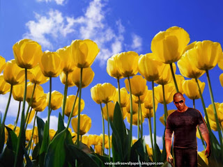 Desktop Wallpaper of Vin Diesel Wheelman the movie in Tulips Flowers Field Desktop Wallpaper