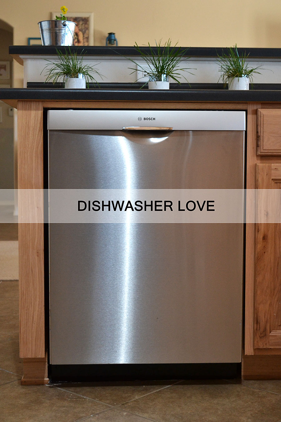 The Bosch Dishwasher Review