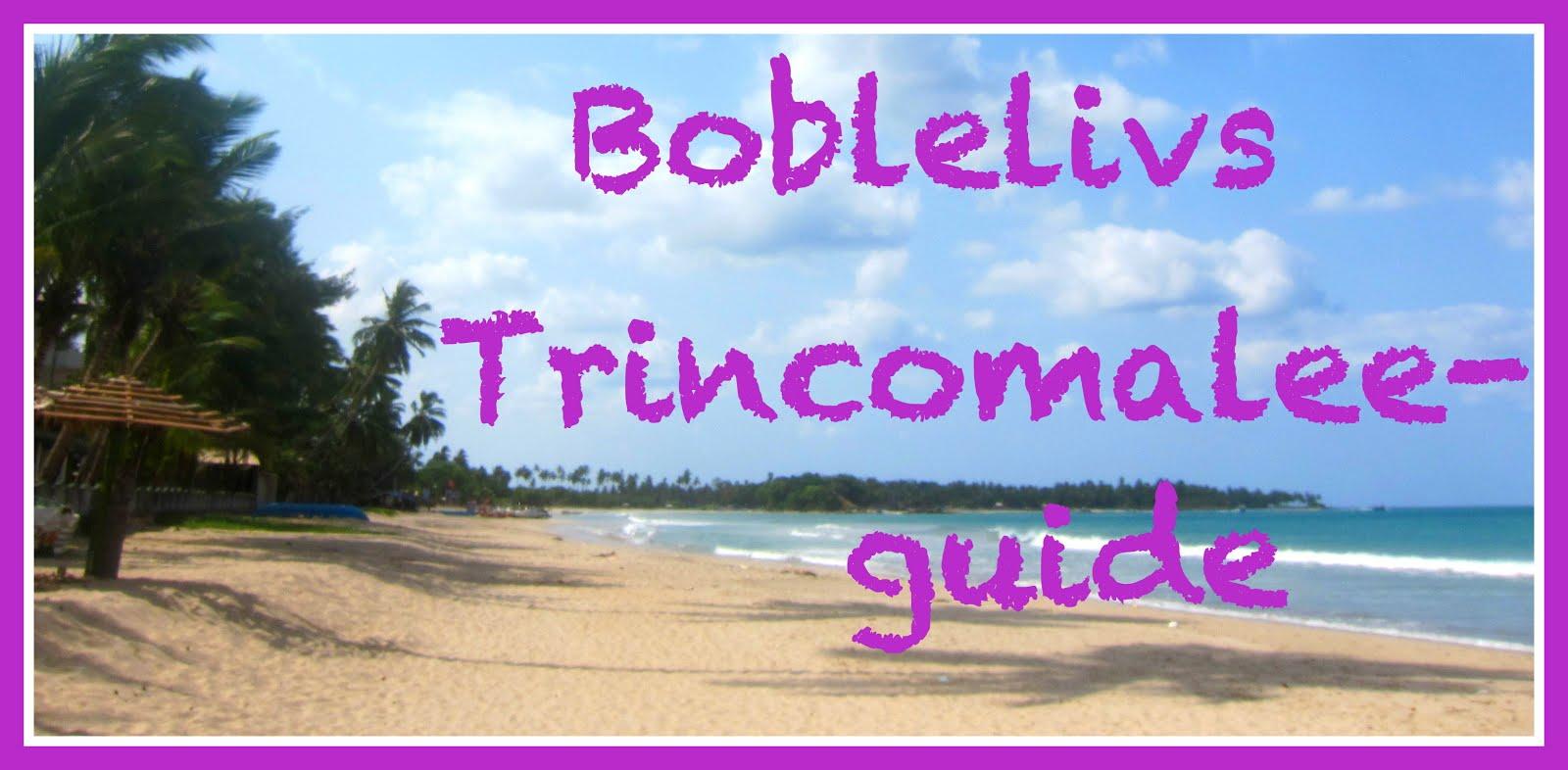 Trincomalee GUIDE