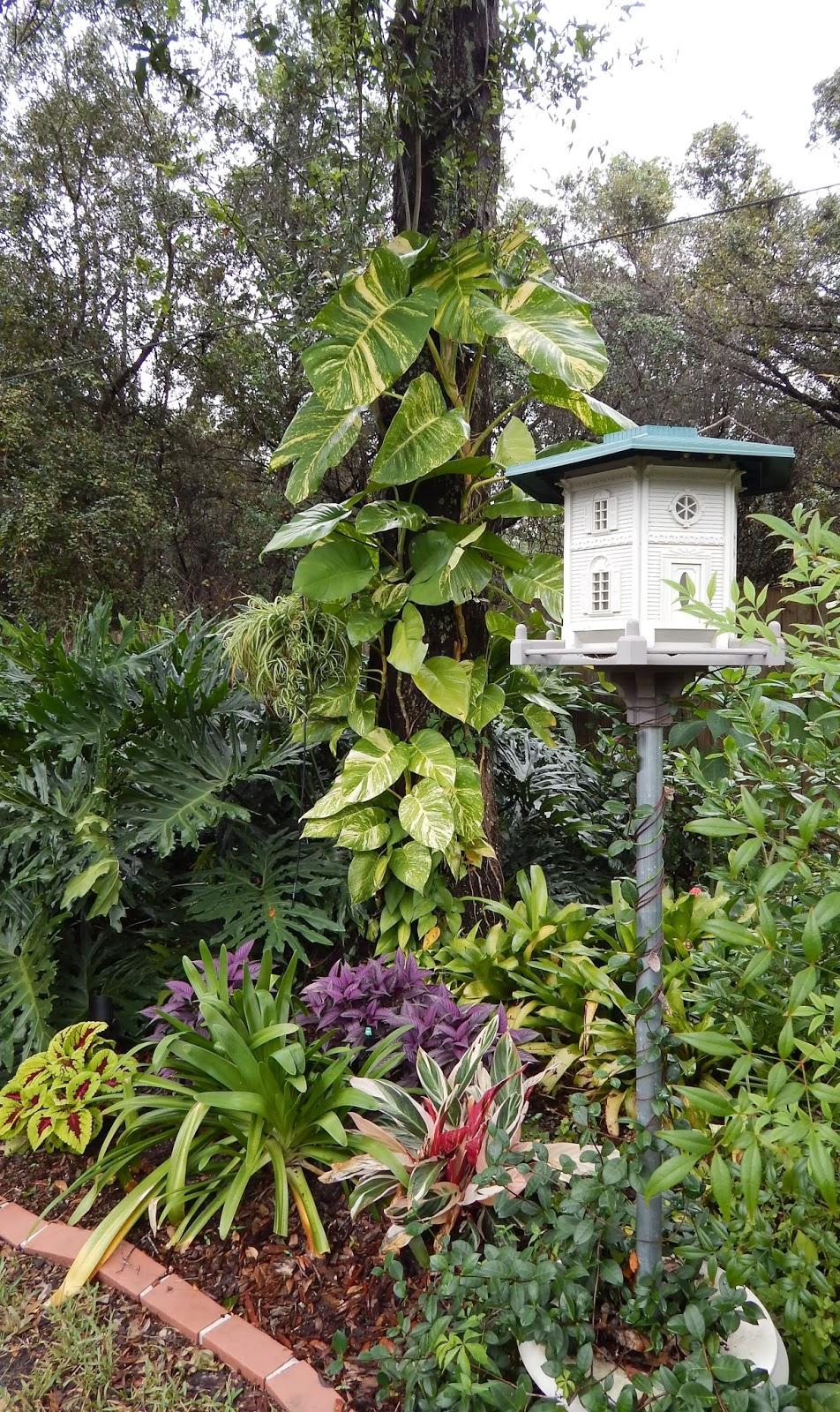 The Gardens of Mount Dora: An Easy-Going Garden