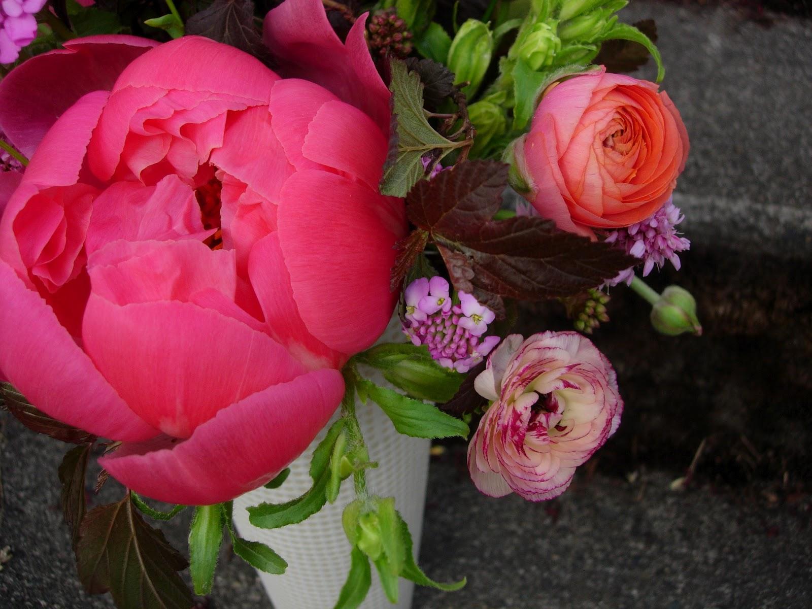 The Botanique Blog Spring Subscription Week Six