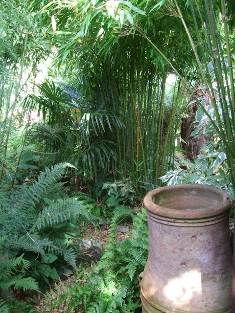 Bamboos in the Jungle Garden