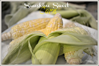 Fresh Sunshine Sweet Corn #Sweetlife