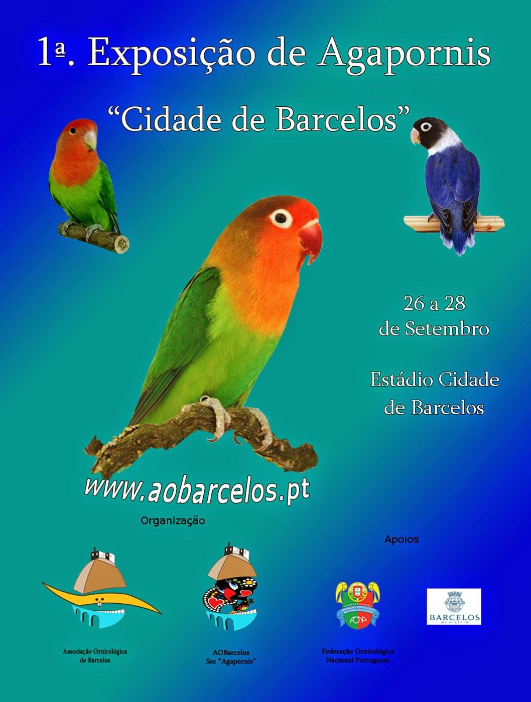 www.aobarcelos.pt