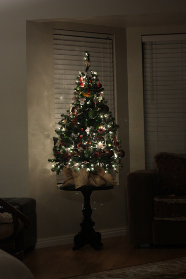 We have not yet upgraded to a full size tree since we moved into our home.  We figure that keeping the small