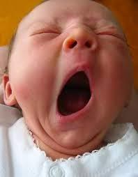 gambar bayi lucu menguap