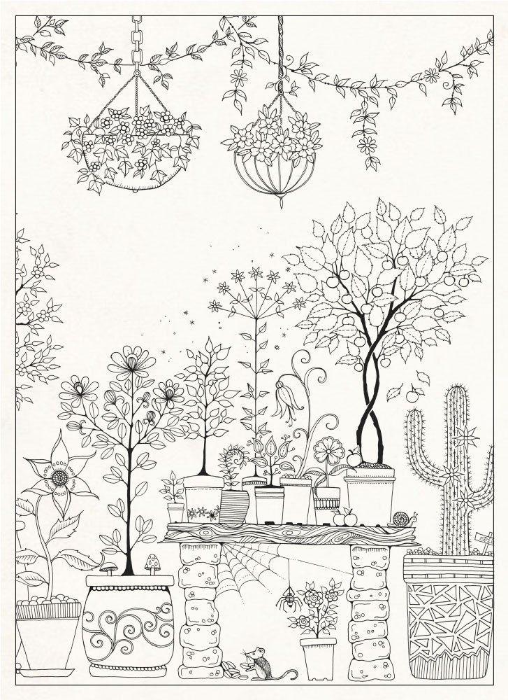 Desenhos do livro jardim secreto para colorir for Secret garden adult coloring book