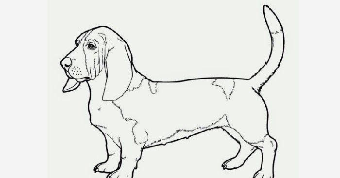 Free Coloring Pages  Softschoolscom