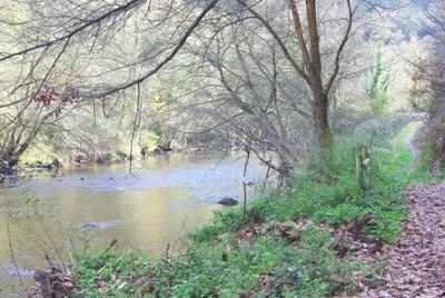 Ribera del río Nora