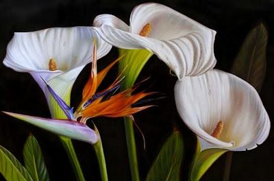 flores-exóticas-pintura-moderna