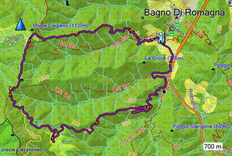 i dì protrar torpidi: Bagno di Romagna (FC) - Nocicchio - Chiar d ...