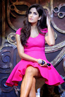 Katrina Kaif Dhoom 3 Song Launch (4).jpg