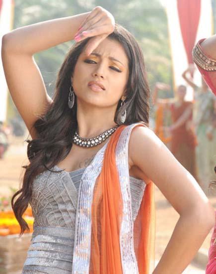 Heroine trisha krishnan ntr Dammu telugu movie stills pics