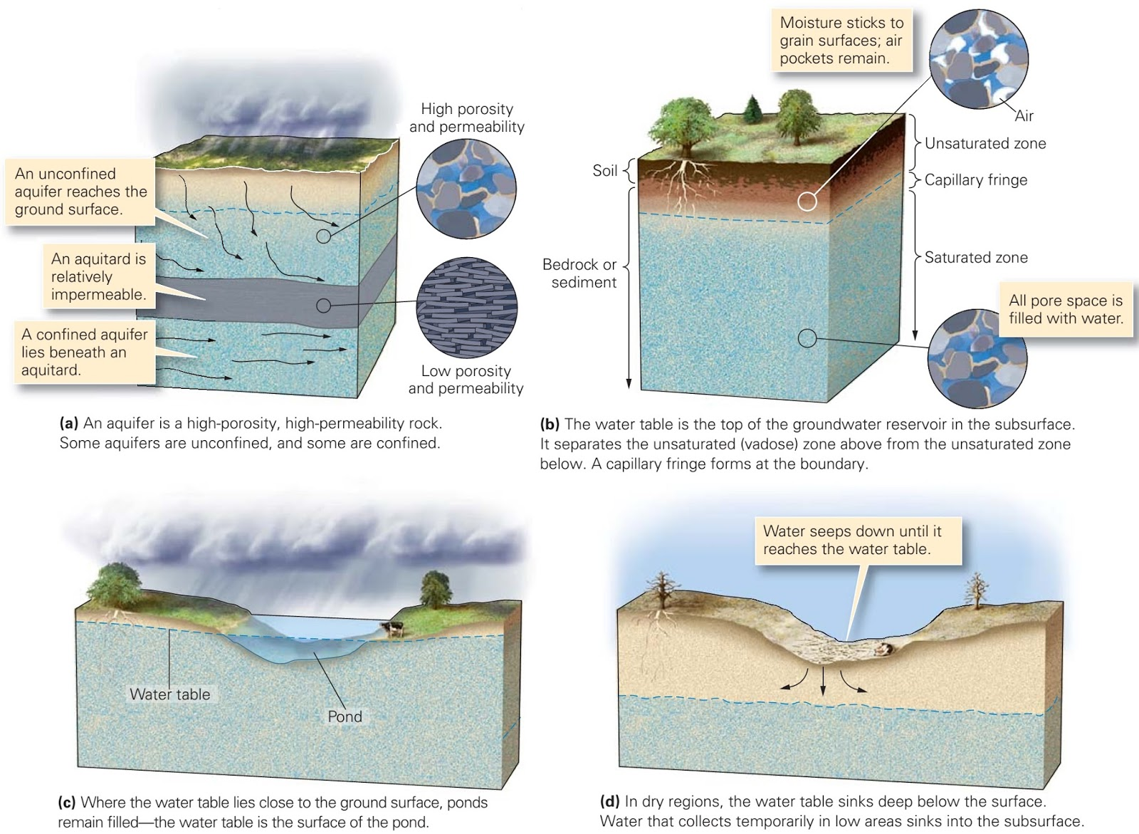 how to find water table in ground