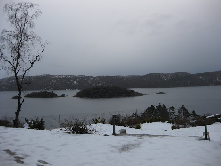 Vinterstemning ved Grønsfjord