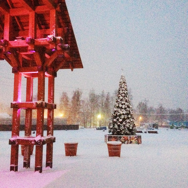 Эта ёлочка зажжётся сегодня, 1 декабря, в 18 часов.