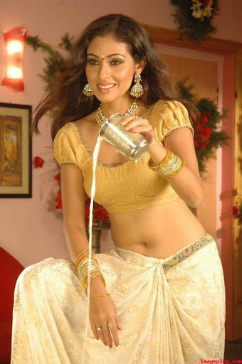 Sada Hot Saree Navel