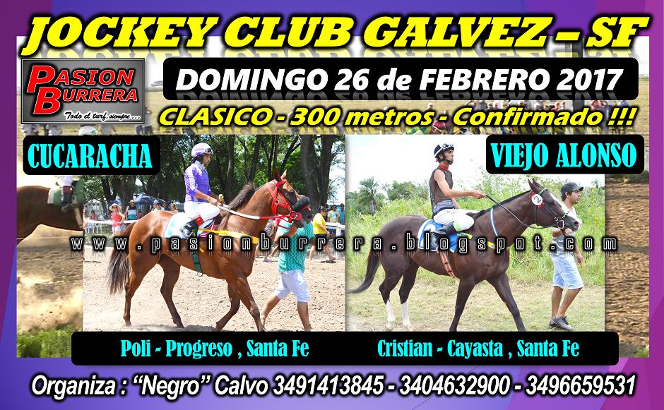 GALVEZ 26 - 300 - 1